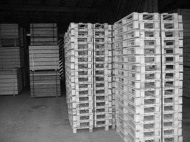 Einwegpaletten 1200x800mm 1.Wahl | AdlerPack