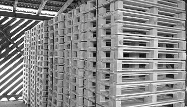 Einwegpaletten 1 Wahl Holz   AdlerPack